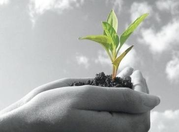 Il-concetto-di-sostenibilità