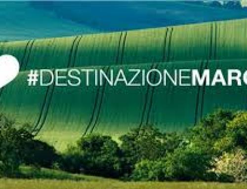 Una panoramica sul turismo nelle Marche